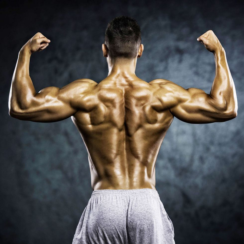 mh-strong-muscular-back-royalty-free-image-1580927608.jpg